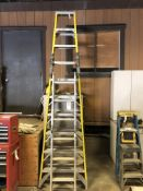 (2) LARGE LADDERS