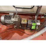 Fristam Positive Displacement Pump