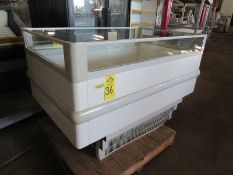 Excellence Industries Mdl. F1J1 602 Island Freezer Case