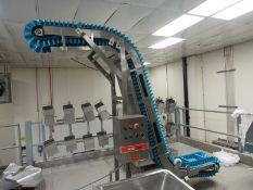 """EvoPak Stainless Steel Z Coveyor, 10"""" W X 9' L plastic belt, 12"""" between flights, 15"""" infeed, 8'"""