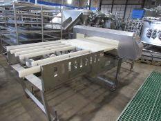 """Loma Mdl. IQ3 Metal Detector, 41 1/4"""" W X 5 3/4"""" Tall aperture, 36"""" W X 10' L conveyor (no belt),"""