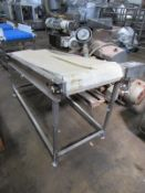 "Stainless Steel Incline Conveyor, dual plastic belt, each 12"" wide X 6' ;long, hydraulic operation,"