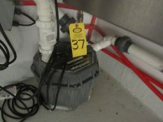 Liberty Pump Automatic Drain Pump, 1/3 h.p. (Required Rigging Fee: $50.00-Payment Must Be Received
