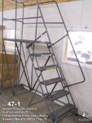 Ballymore 6 step with portable shop ladder