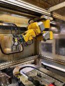 Fanuc LR Mate 200IB 6-Axis Robot
