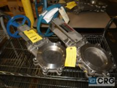 Lot of (2) 316 stainless 6 in. gate valves, (1) Dezurik, and (1) Orbinox (Loading Area)