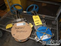 Lot of (2) Dezurik 316 stainless 4 in. gate valves, 150 CWP (Loading Area)