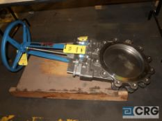 Dezurik 316 stainless 12 in. gate valve, 150 CWP (Loading Area)