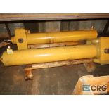 Lot of (2) hydraulic cylinders (Next Bay Cage Area)