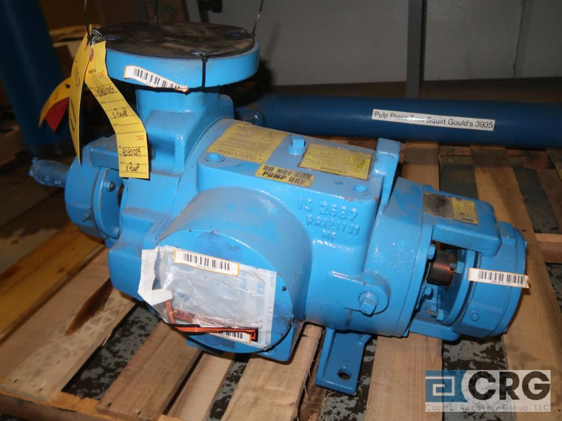 Nash SC2 pump (Basement Stores)