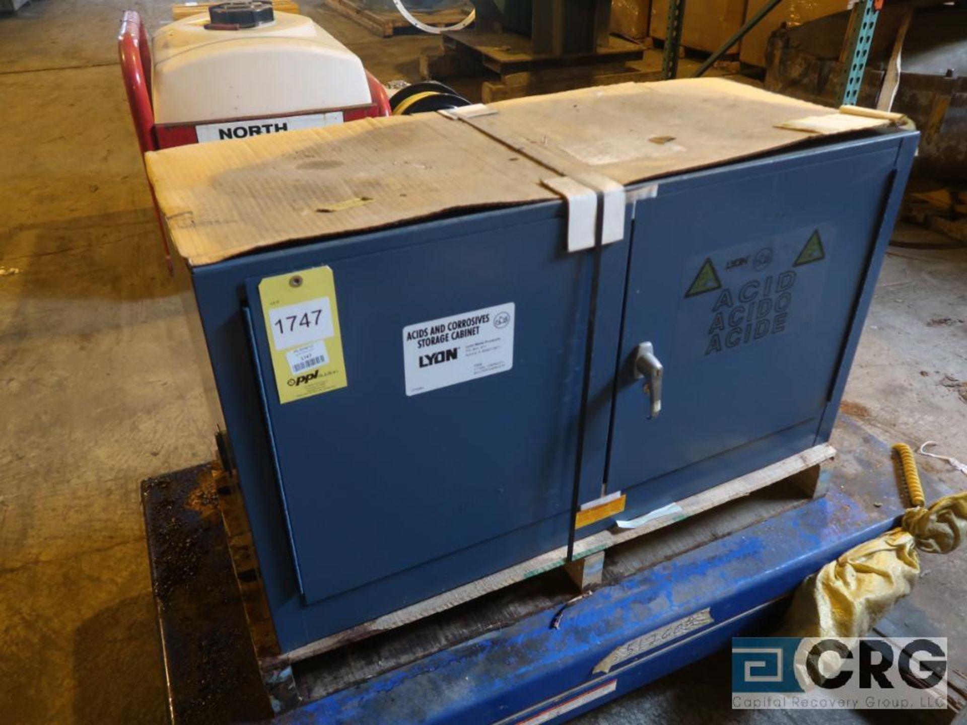 Lyons 2 door acid/chemical storage cabinet (Next Bay Cage Area)