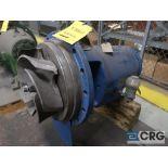Goulds 3196 XLT 13 in. pump (Basement Stores)