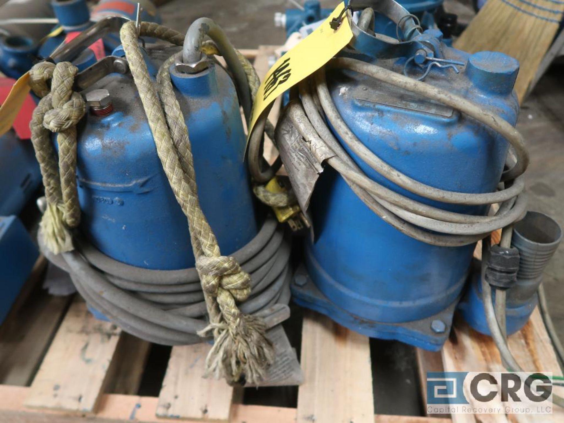 Lot of (2) Goulds submersible pumps, 115 volt (Basement Stores)