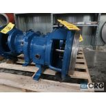 Lot of (2) Goulds 3196 MTX 13 in. pumps (Basement Stores)