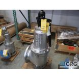 Consolidate 10 in. safety relief valve CL 150 (Store Basement)