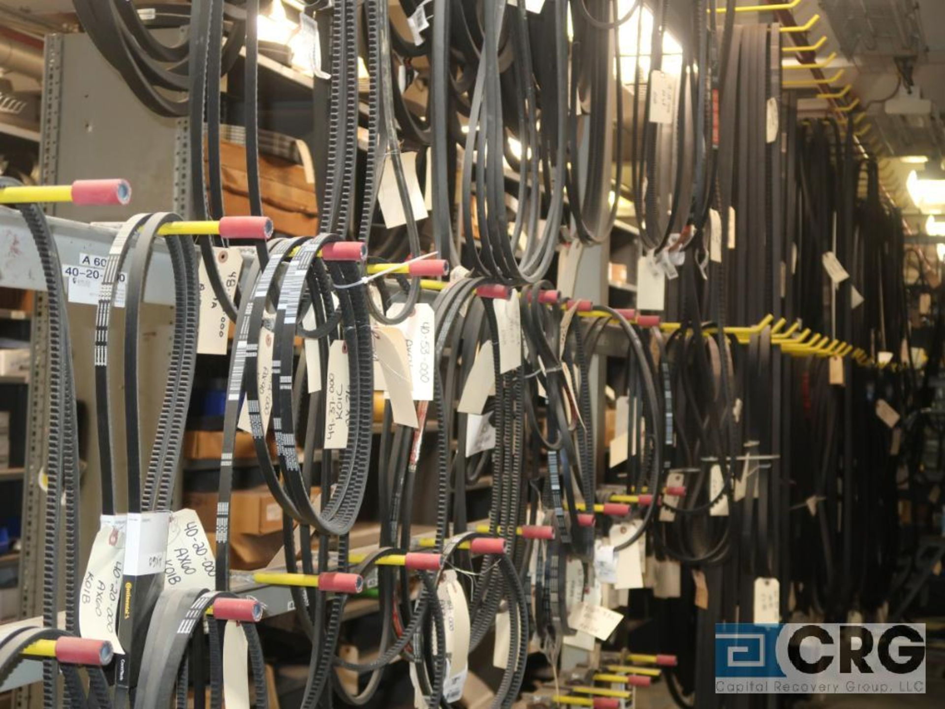 Lot of assorted V-belts hanging, and (6) metal shelving sections-CONTENTS ONLY (Store Basement) - Image 2 of 10
