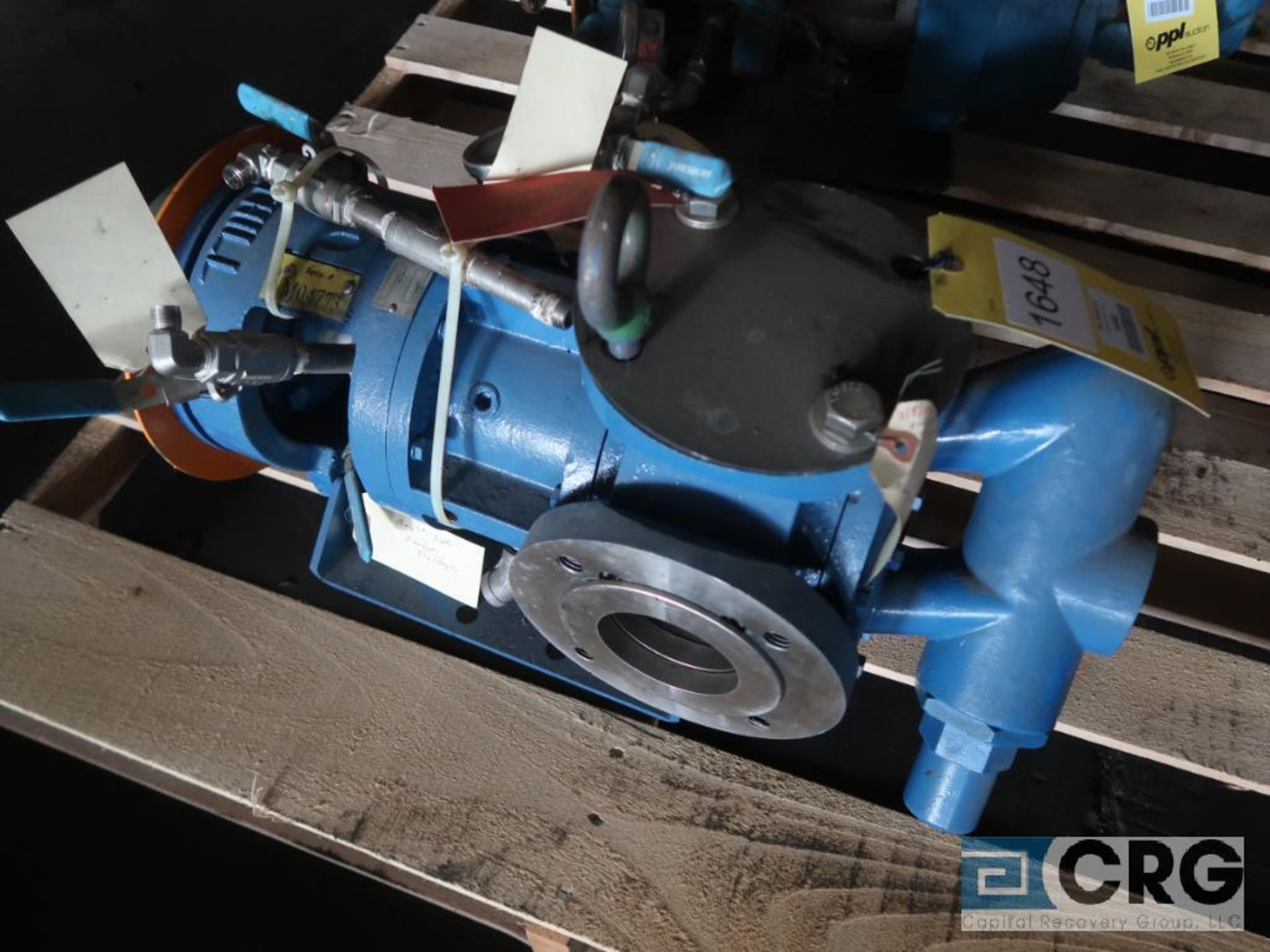Tuthill GG1305S 3 x 3 rotary pump, s/n 19654 (Off Site Warehouse)