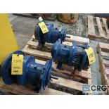 Lot of (3) Goulds 3196 MTI 10 in. pumps (Basement Stores)