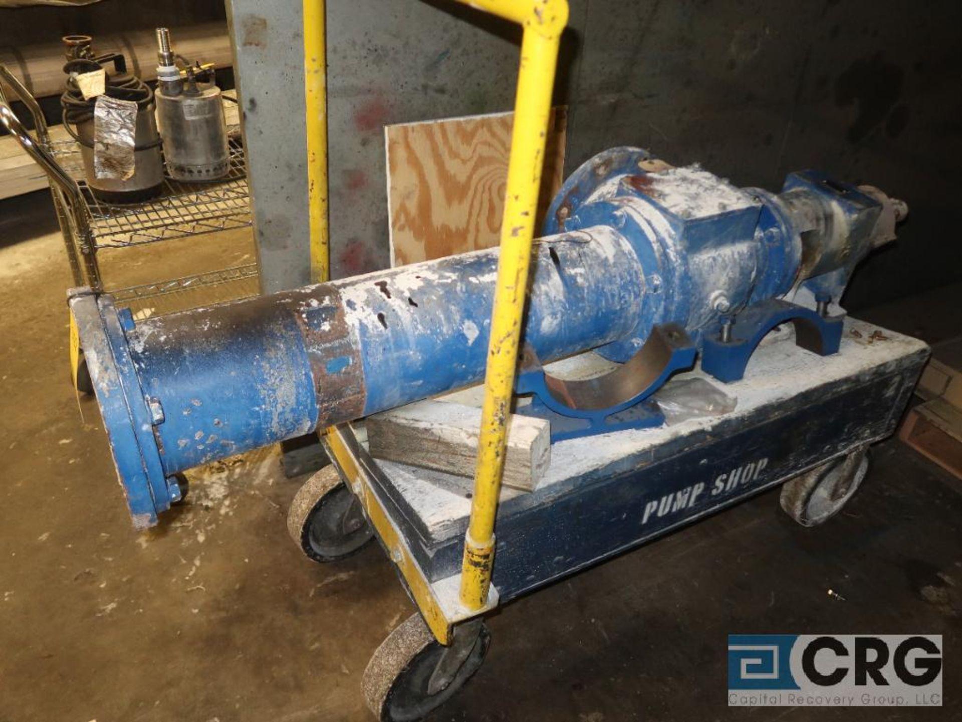Moyno 2F065GICDL 3AAA cavity pump with cart (Basement Stores)