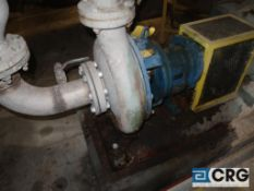 Goulds 3 X 5 centrifugal pump with 50 HP drive (Elev 530 Pulp Mill)