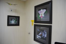 Assorted Wall Hanging Pictures