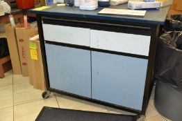 Rolling Lab Cabinet