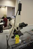 Nikon Eclipse E400 Microscope, SN: 652678 with Nikon Y-THF and VPC-920 Attachments