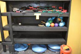 Lot - Weight Balls, Bosi 1/2 Balls & Power Systems
