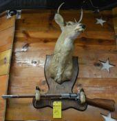 Mounted Deer Head, Hooves and Gun