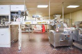Line 1 7ft Dough transfer conveyor