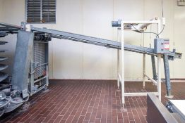 Wilcox Decline Mesh transfer conveyor
