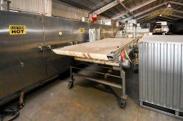MJK0339 Transfer Conveyor