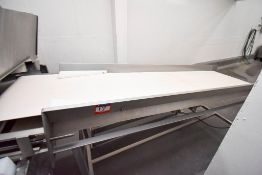 Co2 Freezer InfeedInspection Conveyor