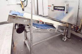Flighted Takeaway Conveyor