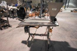 Capsule Inspection Conveyor