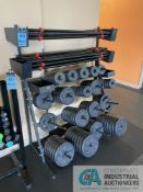 RACK WITH STRAIGHT BARS AND MISCELLANEOUS PLATED WEIGHTS **ATTN: This lot is located on the second