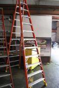 Werner 12' step ladder