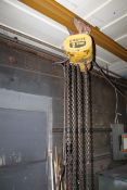 Budget 2 Ton Electric Hoist