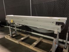 "Dorner 3200 Series 14"" X 144"" Power Belt Conveyor"
