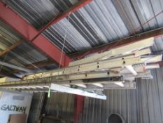 Lot: Assorted Extension Ladders