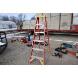 Werner ladder, 6 ft.