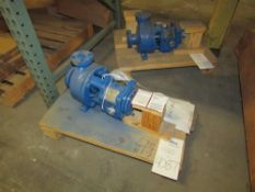 Peerless Pump Co Model 8196S 1x1.5-6 Centrifugal Pumps