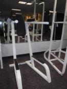 Lot c/o: (6) PCS Exercise Equipment, Maxicam, Parabody Series Steel, Promaxima, Life Fitness Stength