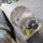 """APPROX. 199""""L X 36"""" DIA. ROLLER IN HOUSINGS (EAST BUILDING, SOUTH WAREHOUSE)"""