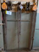 LOT (3) 1-TON CAP. CHAIN HOISTS AND (2) PULLEYS