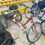 RALEIGH TRICYCLE (CENTER NORTH PLANT)