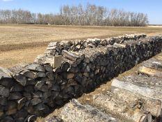 50Ft Row of Aspen Fire Wood