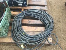 110V Extension Cord