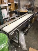 Straight Section of S/S Conveyor,