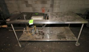 S/S Table with Mounted Sine Type Pump 1/4 hp,